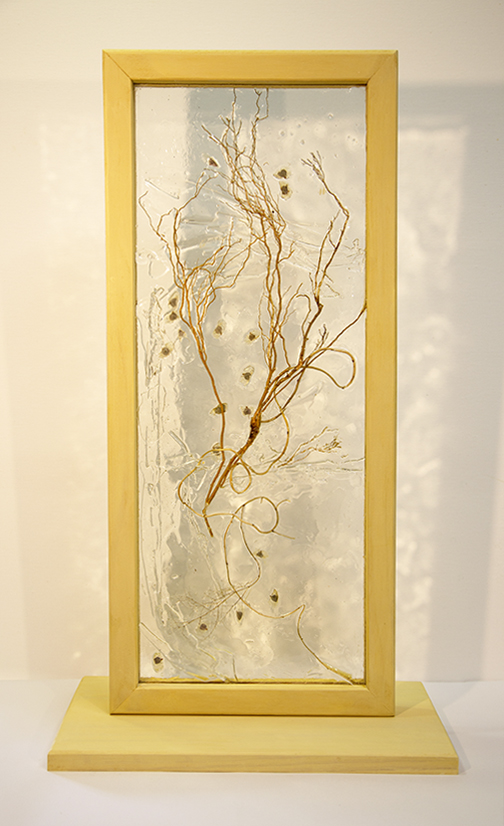 Window to Dreams- resin, wood, glass, organic material 39 x 19 x 67 cm - Lyne Marshall